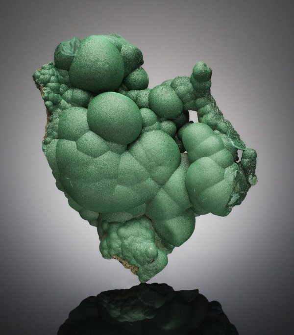 Malachite, 12.5 cm tall, L'Etoile du Congo mine, Lumumbashi, Katanga Copper Crescent, Democratic Republic of Congo;