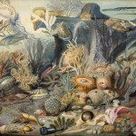Christian Schuessele (Schussele), Ocean Life, 1859