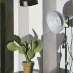 Charles Sheeler, Cactus, 1931