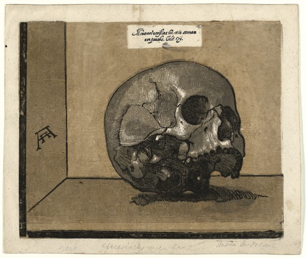 Andrea Andreani, after Giovanni Fortuna (?), A Skull, circa 1588
